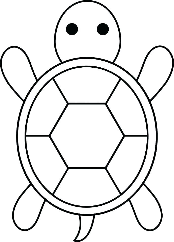 687x959 Baby Turtle Drawing