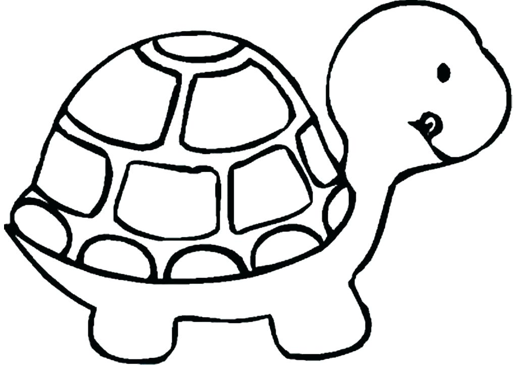 1024x724 Drawings Of A Turtle Completing The Drawing Drawings Turtles