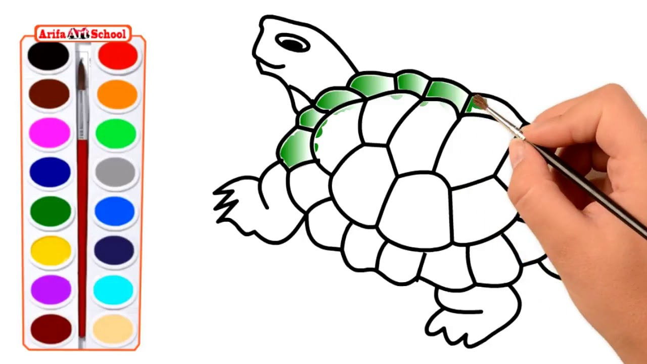 1280x720 How To Draw A Realistic Sea Turtle Step