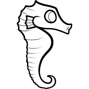 302x302 How To Draw A Seahorse For Kids, Step