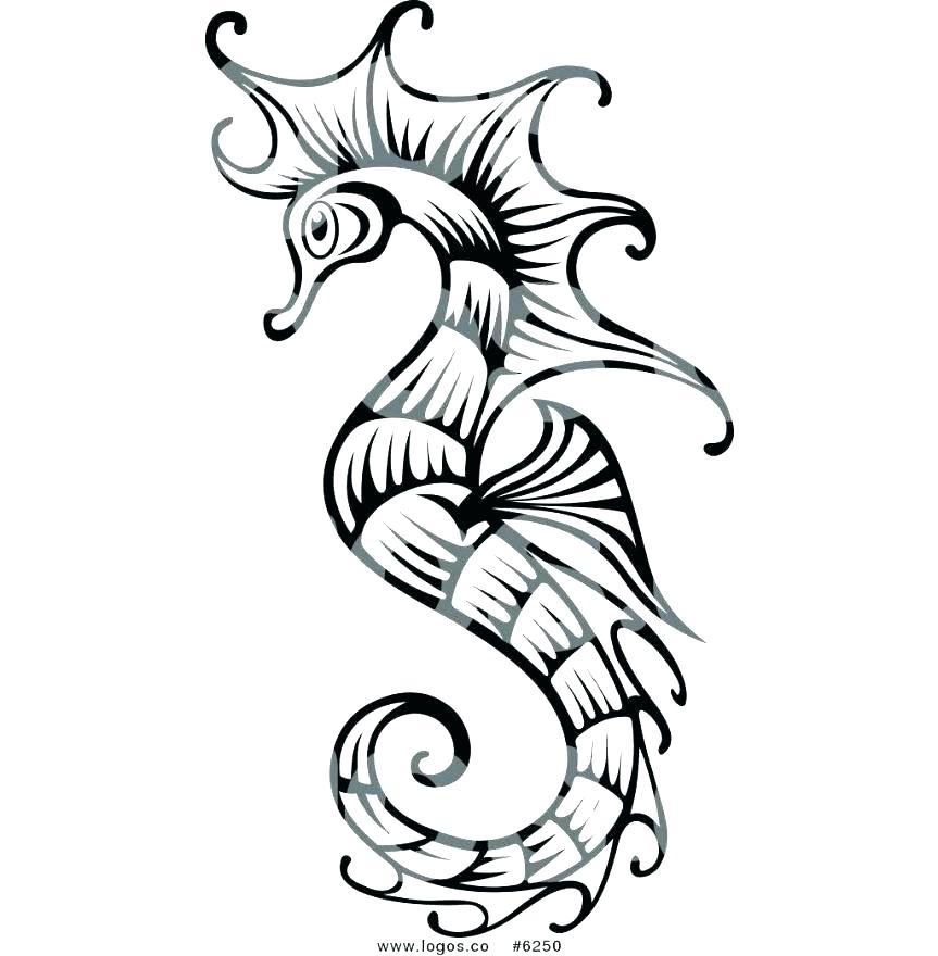 863x880 Sea Horse Coloring