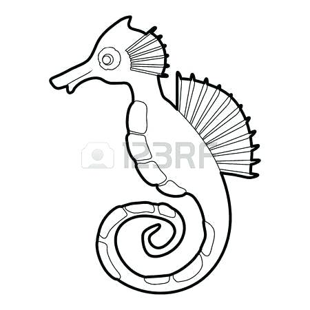 450x450 Outline Of Seahorse