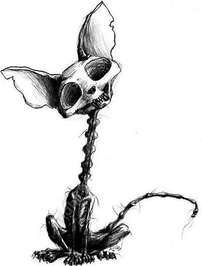 400x528 skeleton kitty in a dark, dark room creepy drawings, art et