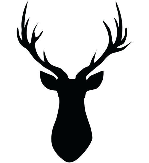 499x543 drawings of deer heads deer head drawing how to draw a deer head