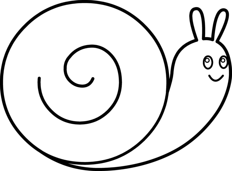 Realistic Snail Drawing