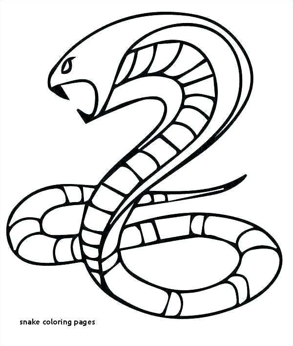 600x707 rattlesnake color rattlesnake coloring