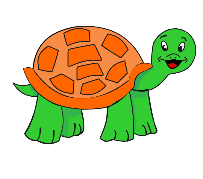 678x600 Drawing Turtle Free Download On Unixtitan