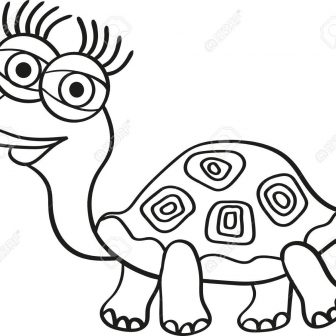 336x336 Turtle And Drawing Tags Cow Drawings Cool Color Pages Simple