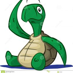 250x250 Turtle Drawing Cute Face Realistic From Above Outline Sea I