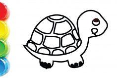 236x157 Turtle Drawing Python Realistic From Above Cute Ninja Tumblr Sea