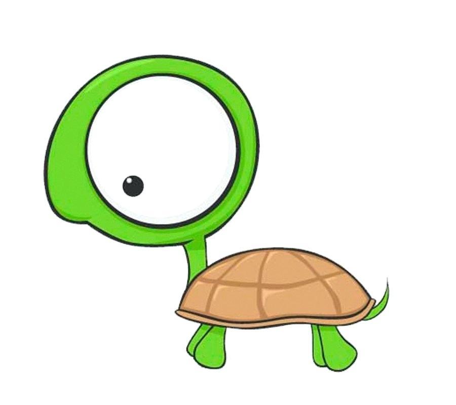 900x800 Turtle Cartoon Drawing