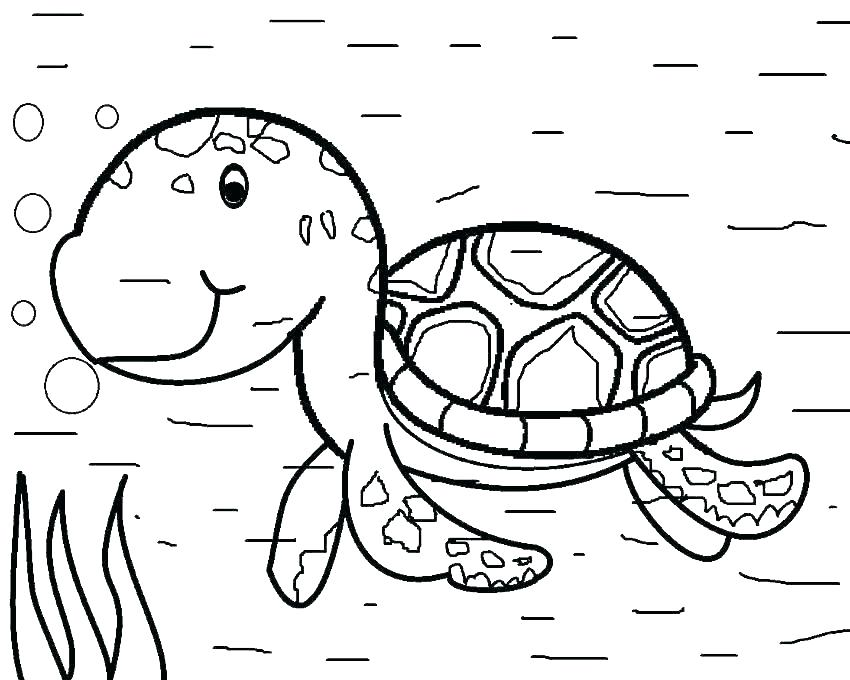 850x680 Coloring Pictures Of Turtles Baby Turtle Coloring Pages Realistic