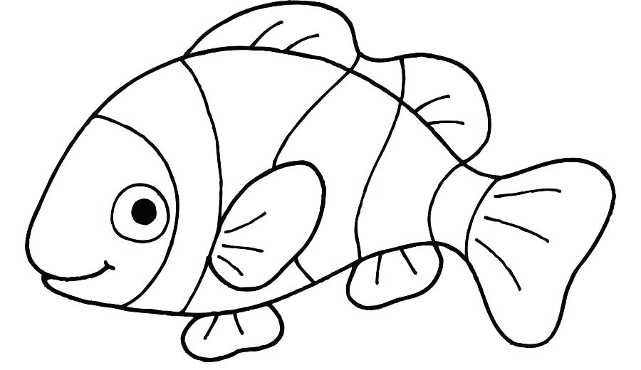 900x520 how to draw a cartoon clown fish fishes coloring pages clown fish