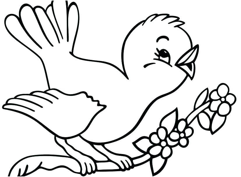 827x609 Bird Coloring Pages To Print Robin Bird Coloring Pages Printable