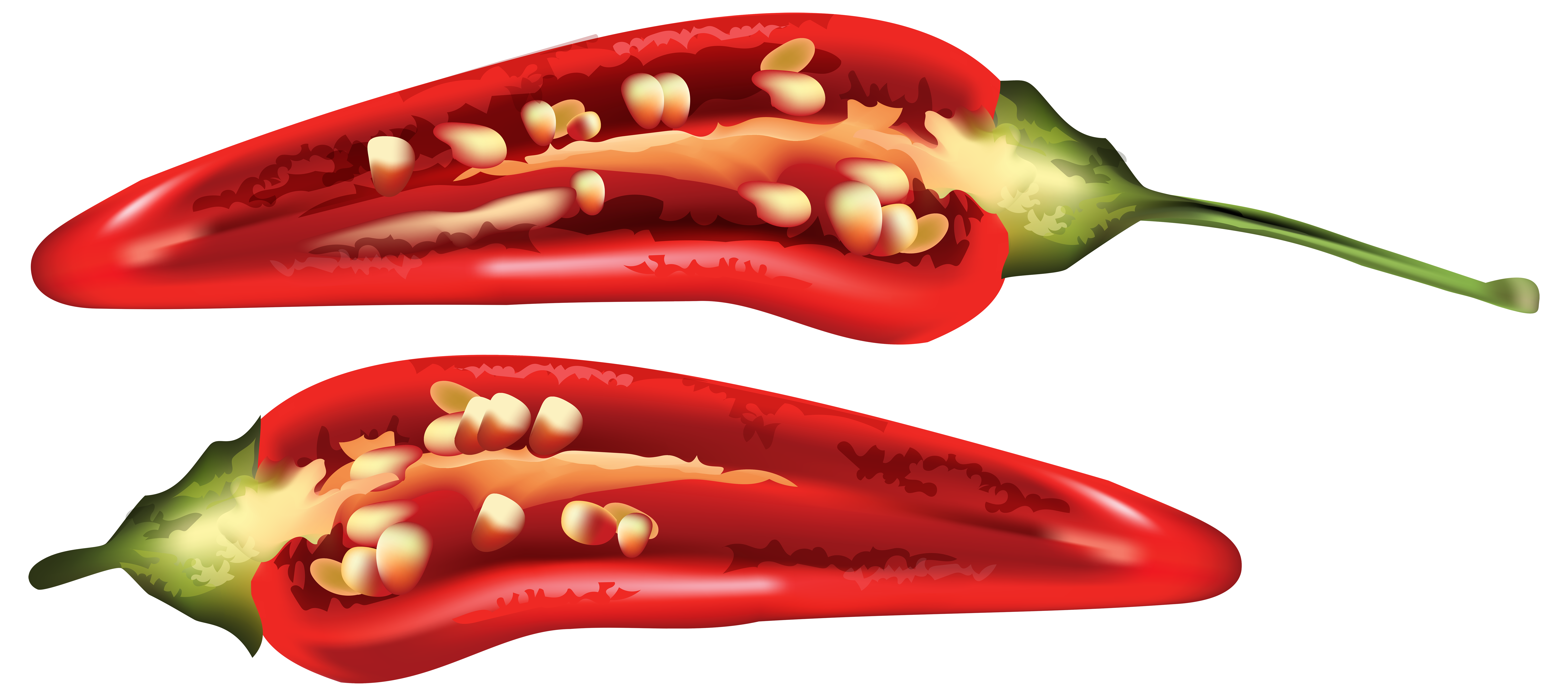 Red Chili Drawing