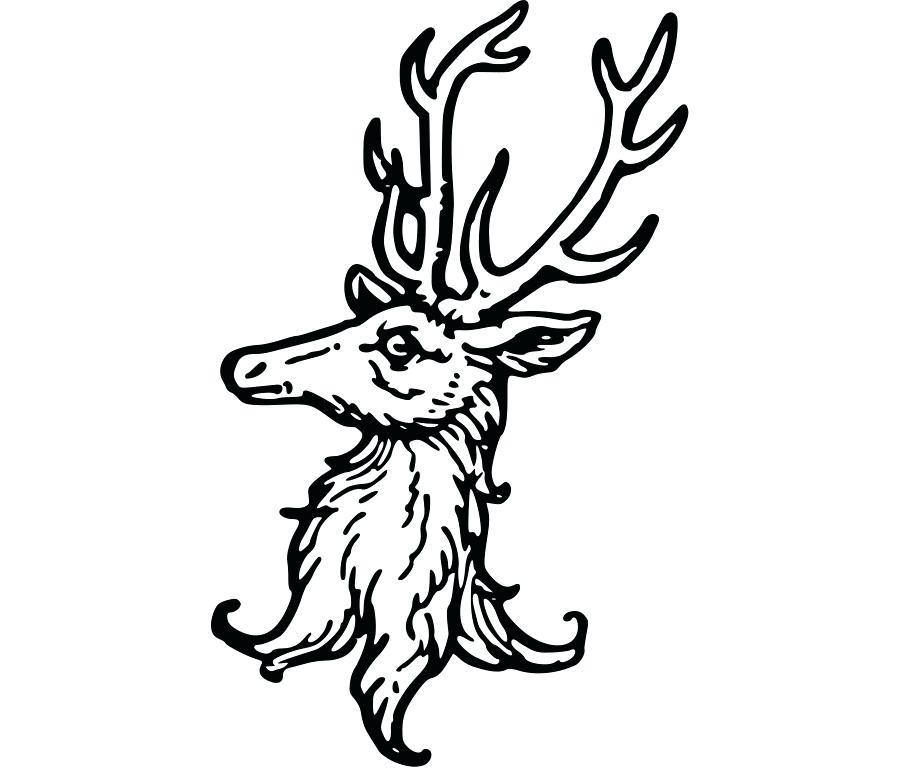 900x780 deer coat of arms arms crest of deer coat arms agencydeja club