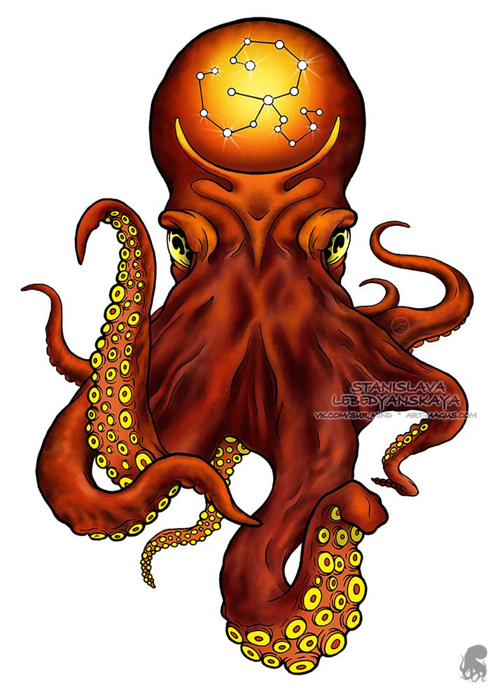 707x981 octopus squid octopus art, octopus