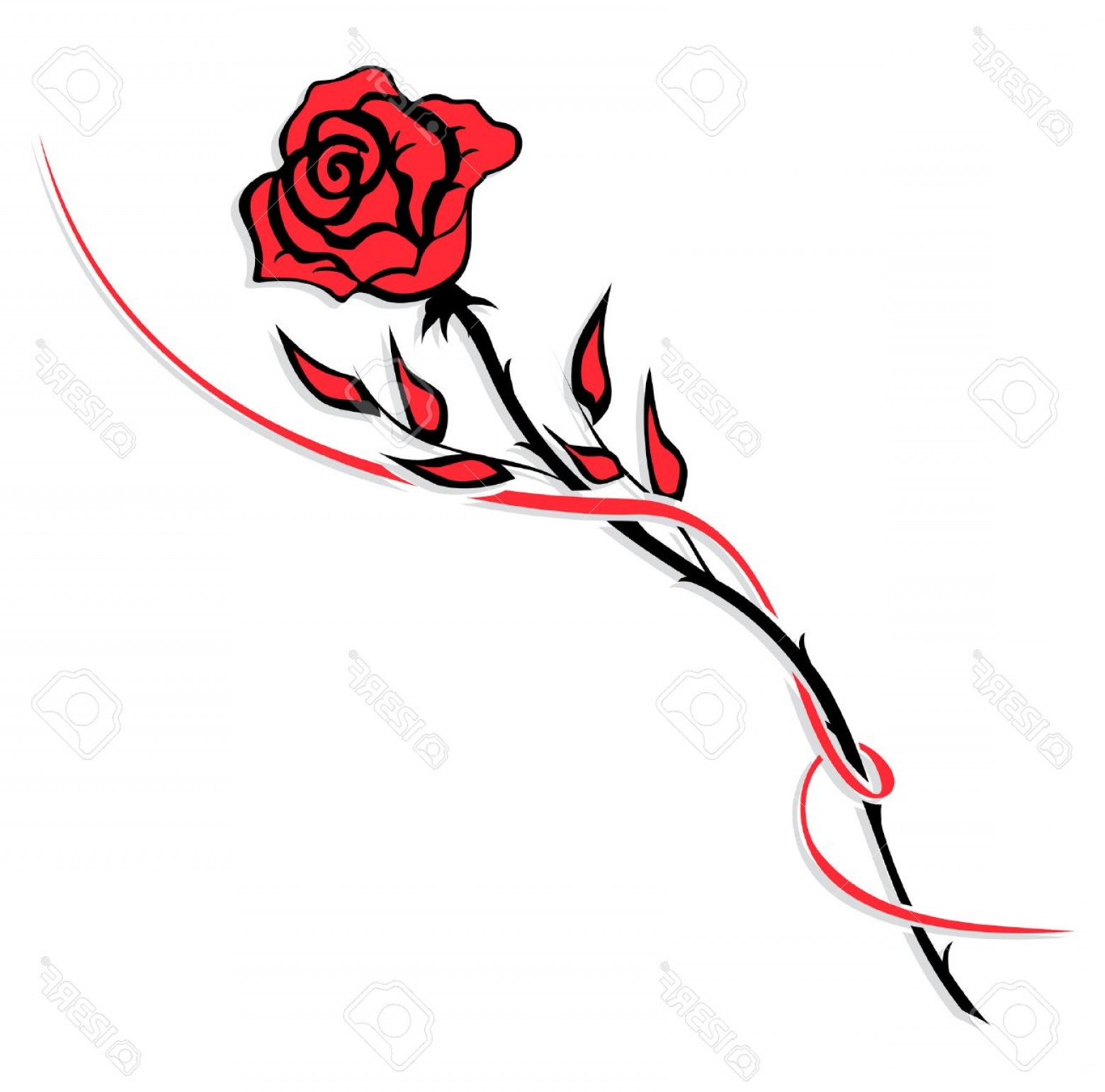 1560x1543 Photosimple Red Rose Drawing Isolated On White Lazttweet