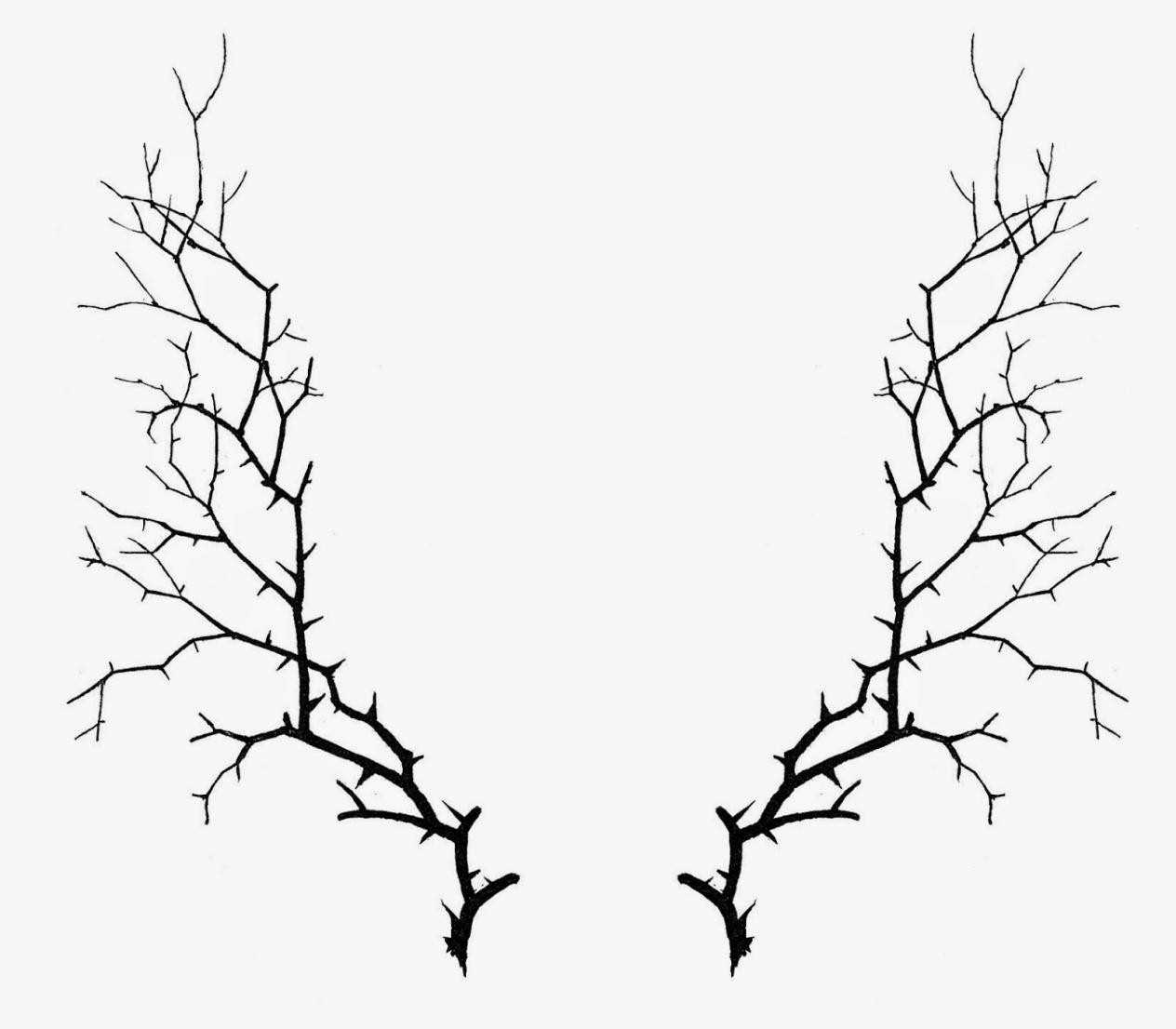 1264x1106 Vine Drawing Thorns For Free Download