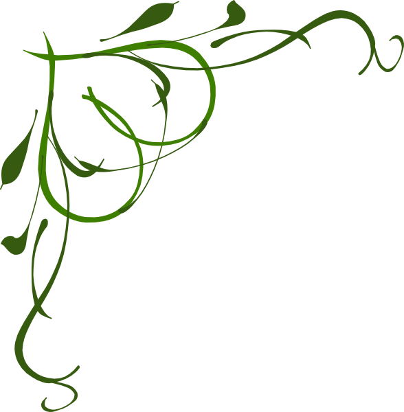 588x600 Collection Of Free Holly Drawing Vine Download On Ui Ex
