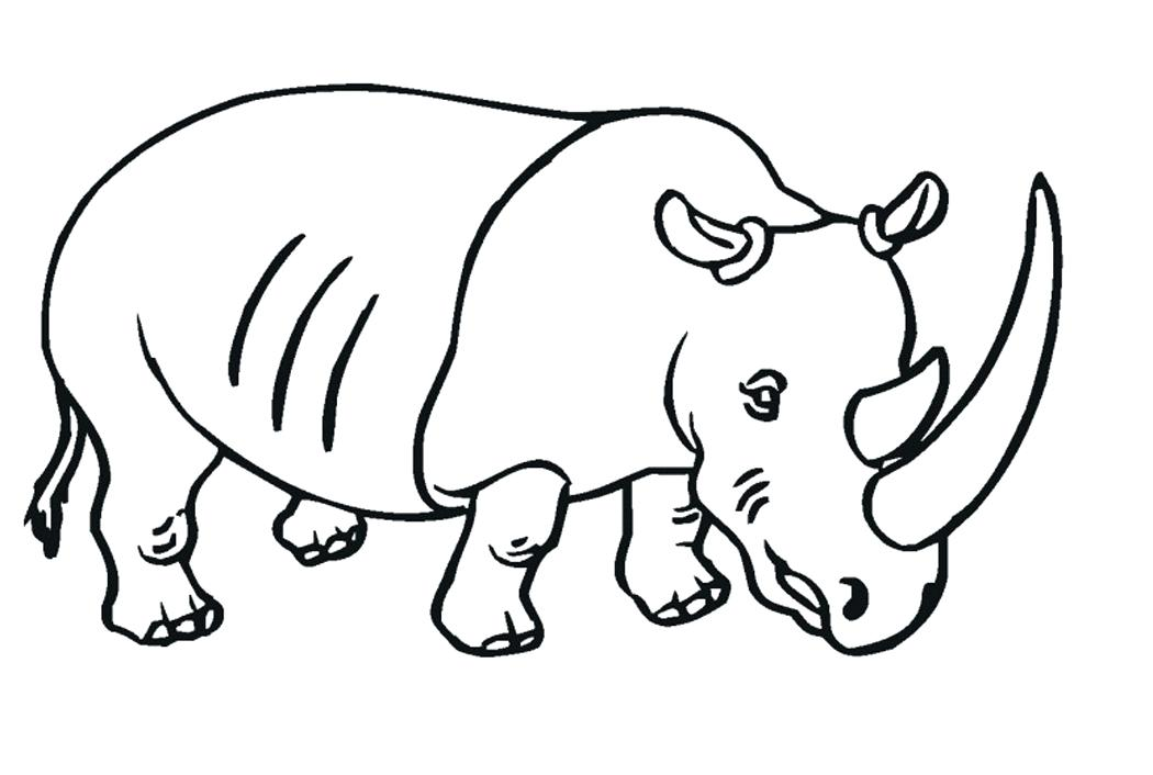 1050x706 rhino coloring pages rhino coloring