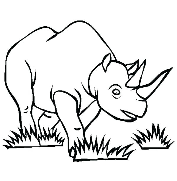 600x612 rhino coloring pages rhino coloring pages rhino coloring pages