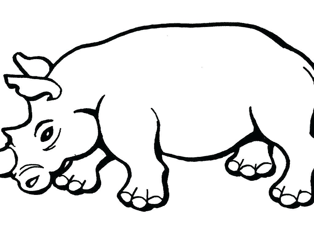 1024x744 rhino coloring pages baby rhino coloring