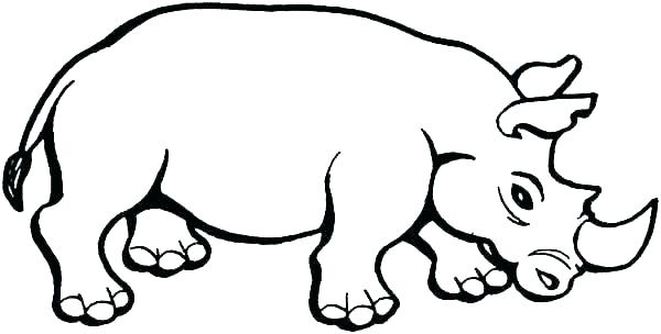 600x304 rhino coloring pages full size of rhino colouring pages printable