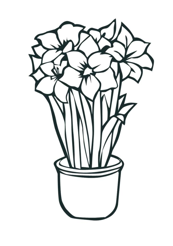 722x1024 tropical flower coloring pages tropical flower coloring pages
