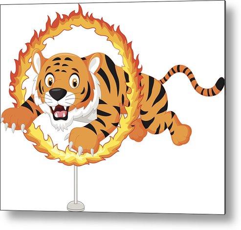 493x470 cartoon tiger jumps through ring of fire metal print