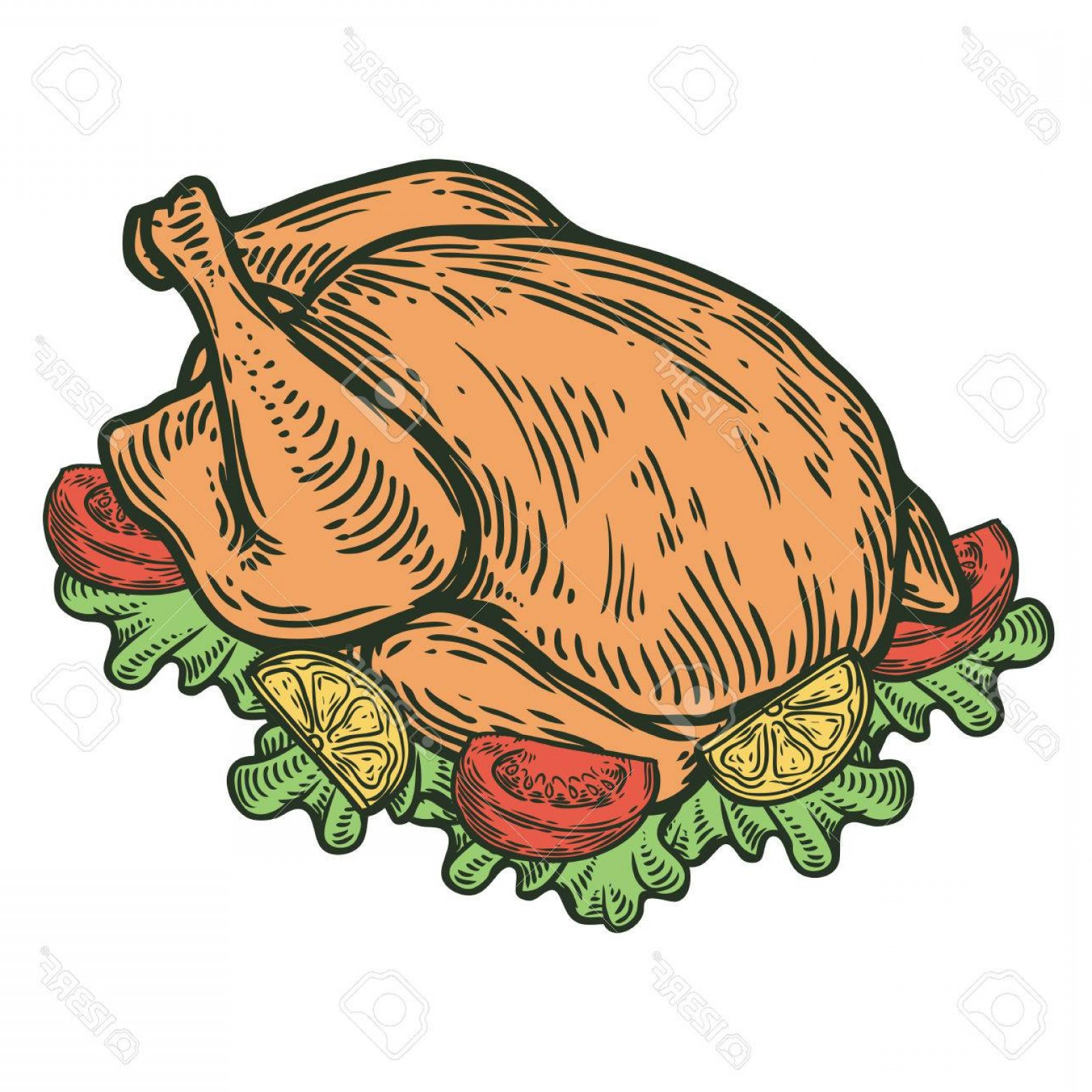 1560x1560 Photostock Vector Grilled Roasted Chicken Turkey Duck Organic Food