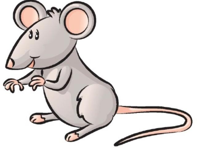 640x480 rodent clipart drawing