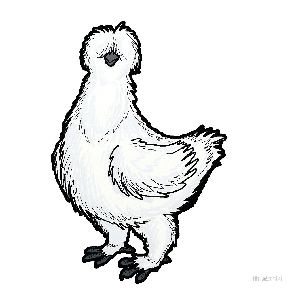 Rooster Chicken Drawing