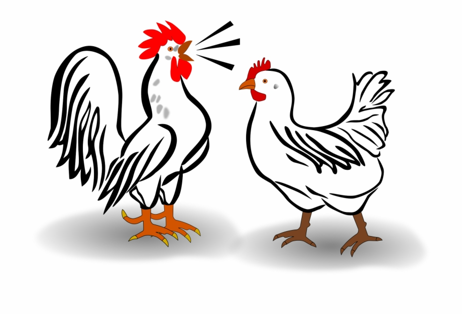 920x625 This Free Icons Png Design Of Rooster And Chicken