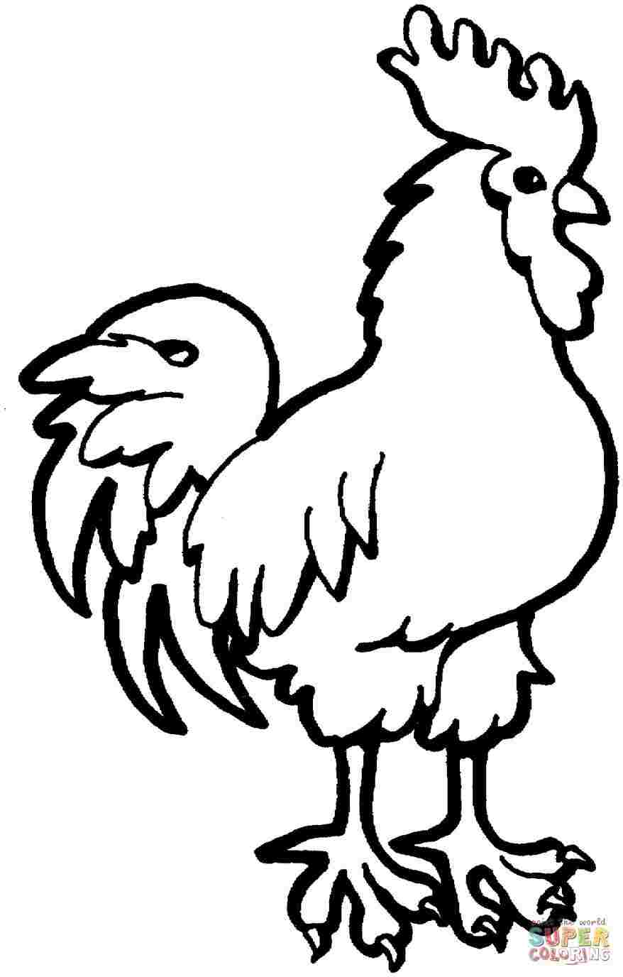 878x1376 Huge Collection Of 'rooster Drawing For Kids' Download More Than