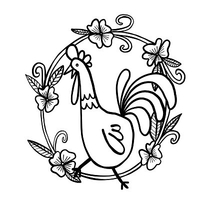 416x416 Rooster Drawing With Flower Frame, Isolated Illustration Stock