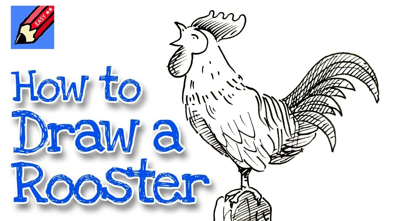 1280x720 How To Draw A Rooster Real Easy For Chinese New Year Drawing