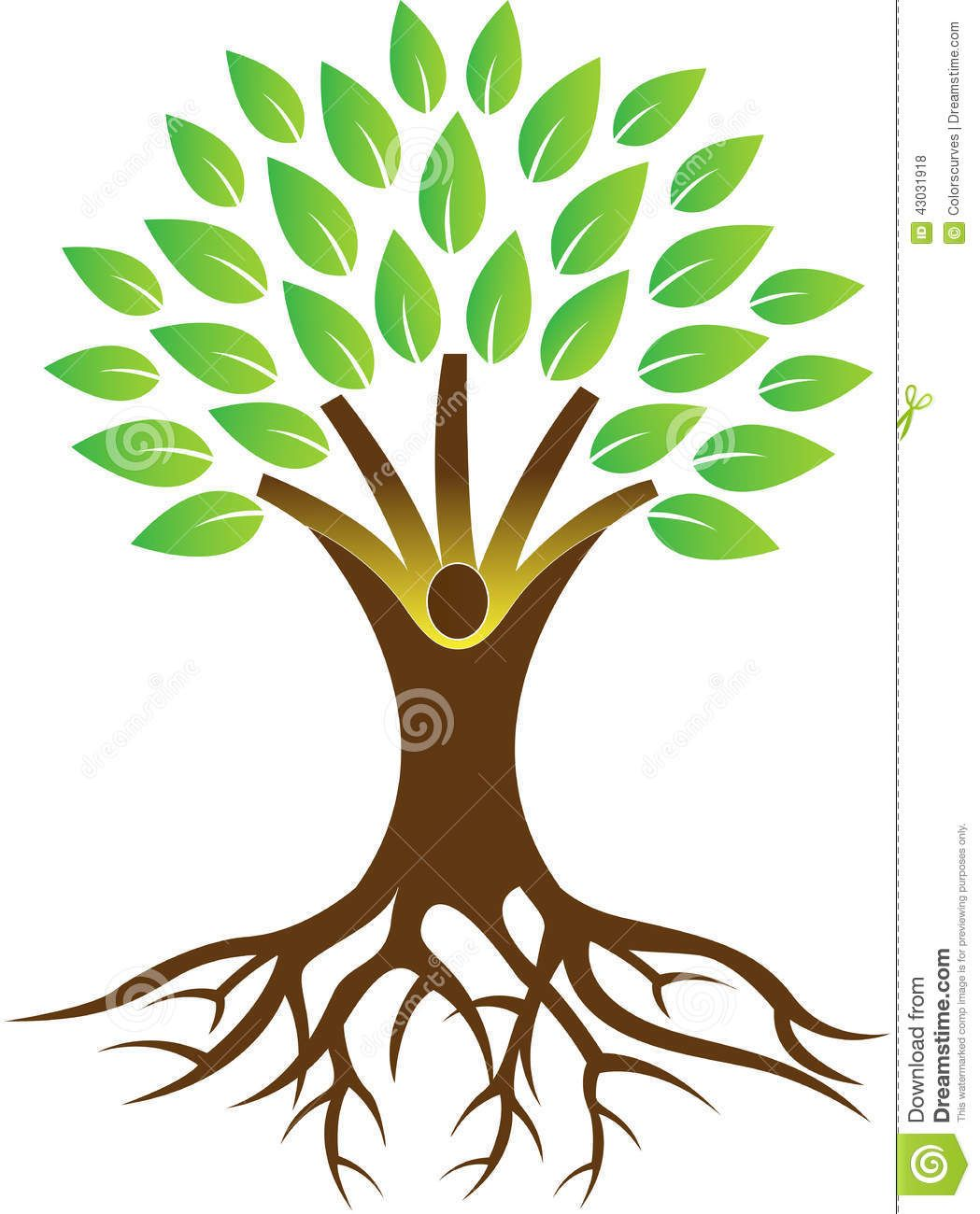 1049x1300 tree with roots drawing vector office ideas in roots