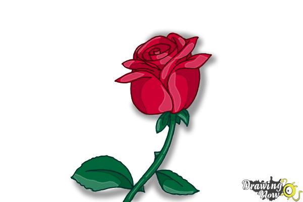600x400 How To Draw A Rose Step