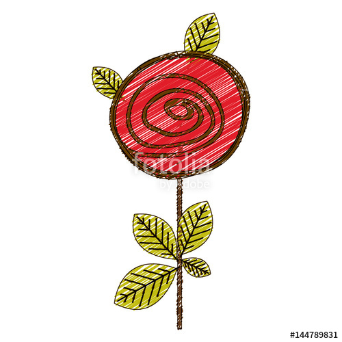 500x500 Color Pencil Drawing Of Button Rose With Leaves And Stem Vector