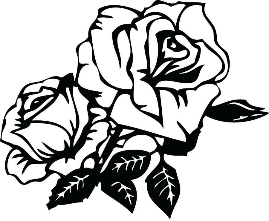 900x740 rose drawing outline rose outline clip art rose drawing outline