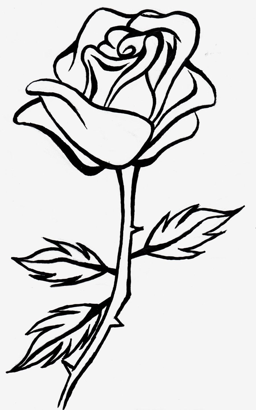 900x1441 Rose Line Drawing Clipart Adult Coloring Tip Flower Line