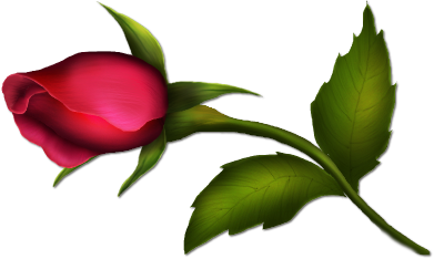 391x234 Bud Drawing Single Rose Transparent Png Clipart Free Download