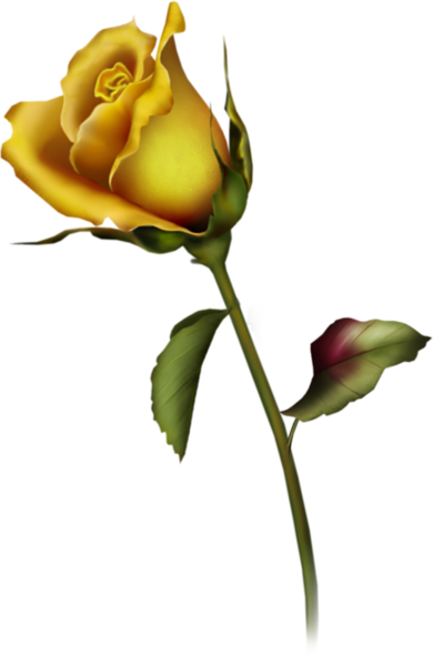 390x600 Leaves And Vines Yellow Rose Tattoos