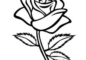 300x210 Rose Flower Drawing How To Draw A Rose Bud, Rose Bud Step