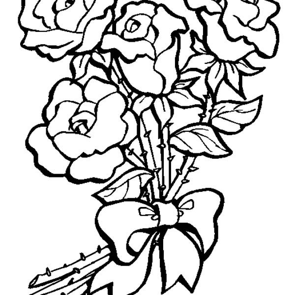 600x600 Bunch Of Rose Flowers Drawing