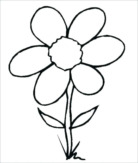 530x627 Coloring Pages Draw A Rose For Kids Coloring Pages Coloring Pages