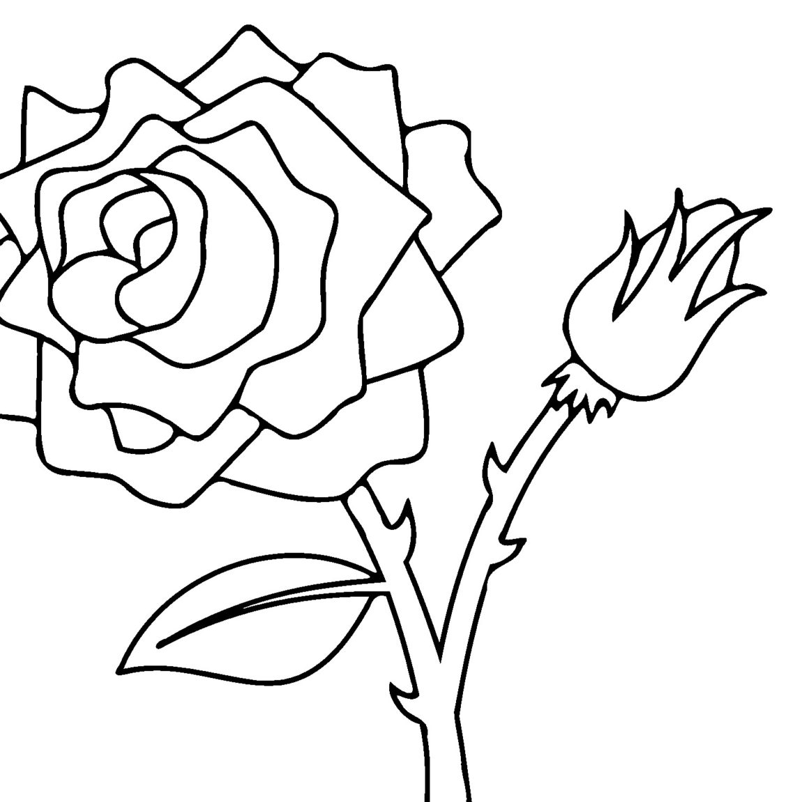 1150x1150 Drawing Colors Rose For Free Download
