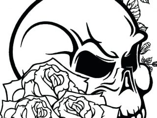 320x240 Pictures Of Roses To Color Rose Drawing Color