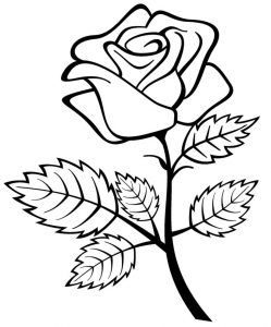 249x300 Rose Coloring Picture